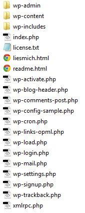 Schritt 2. Kopiere sämtliche Dateien deiner WordPress Installation auf deinen lokalen Rechner