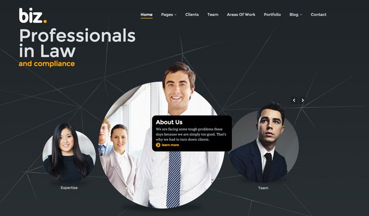 .biz WordPress theme