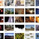 Kostenloses 4K Stock-Videomaterial - über 1.500 Videos als Download